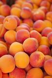 Fresh Apricots for Sale  Saint Remy-De-Provence  France