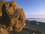 Boulder at Sunrise on Beach  Washington  Orcas Island  USA