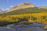 Autumn Aspens  St Mary River  Glacier National Park  Montana  USA