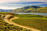 Benson Vineyards Estate Winery  Lake Chelan  Washington  USA