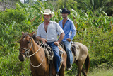 Cowboys on Horses Riding on Road from Ranch  Trinidad  Cuba