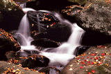 Little Pigeon River  Great Smoky Mountains NP  Tennessee  USA