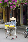 Local Woman in Conical Hat with Bike  Hoi An  Da Nang  Vietnam