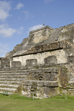 Ruins of Ancient Mayan Ceremonial Site  Altun Ha  Belize