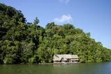 Rio Dulce Riverside View  Rio Dulce National Park  Guatemala