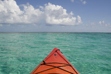 Kayaking Off the Coast  Southwater Cay  Belize