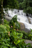 Rainforest Waterfall  Serra Da Bocaina NP  Parati  Brazil
