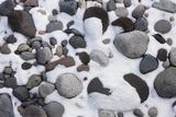 Snow and Rocks  Mt Rainier National Park  Washington  USA