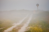 Ranch Road and Windmill in Fog  Texas  USA