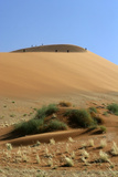 Hikers on Distant Dune Appear as Ants  Sossusvlei  Namibia