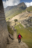 Man Walking Down Stone Steps of Machu Picchu  Peru