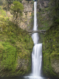 Multnomah Falls  Columbia Gorge National Scenic Area  Oregon  USA