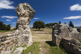 Greek and Roman Ruins  Aleria  Costa Serena  Corsica  France