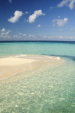 Sandbar  Goff Caye  Belize