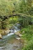 Stream and Bridge  Rize  Black Sea Region of Turkey