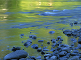 Reflections in the Elwha River  Olympic National Park  Washington  USA