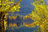 Autumn Colors of the June Lake Loop  California  USA