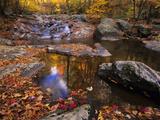 Autumn Tranquility  Upper Whiteoak Falls  Shenandoah NP  Virginia  USA