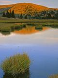 Pasayten Wilderness Okanogan-Wenatchee National Forest  Washington Usa