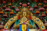 Buddha Statues at Stok Palace  Ledakh  India