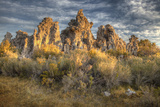 Sunrise on Tufas and Grass  Mono Lake  California  USA