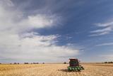 Wheat Field and Combine  North Platte  Nebraska  USA