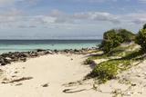 View of Beach and Sea of Zanj  Ihla Das Rolas  Mozambique