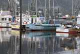 Fishing Boats Moored in Harbor  Petersburg  Alaska  USA