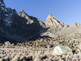 Chogoria Route with Mount Kenya  Mt Kenya National Park  Kenya