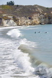 Visitors Enjoying the Ocean  Avila Beach  California  USA