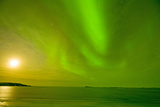Green Northern Lights over the Sea  Beaufort Sea  ANWR  Alaska  USA