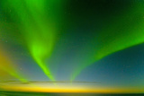 Northern Lights over the Sea  Beaufort Sea  ANWR  Alaska  USA