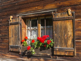 Traditional Window with Planter  Tyrol  Austria