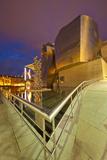 Guggenheim Museum Lit at Night  Bilbao  Spain