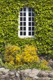 Window Detail  St-Germain Des Vaux  Normandy  France
