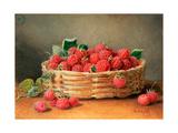 A Still Life of Raspberries in a Wicker Basket