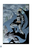 Batman: Side View of Batman Standing on Gargoil with City and Bat Signal in Background