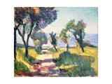 Oliviers Giclée par Henri Matisse
