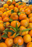 Oranges for Sale at Outdoor Market  Bamberg  Germany
