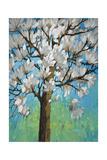 Magnolia in Bloom 1