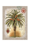 Linen Date Palm Tree