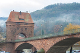 Main Bridge over Main River  Miltenberg  Germany