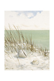 Seaside Bluff Reproduction d'art par Arnie Fisk