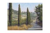Tuscan Moment 1