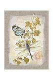 Natural Life, Dragonfly Reproduction d'art par Chad Barrett