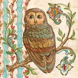 Treetop Owl II