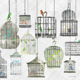 Birdcages Collage Square II