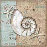 Linen Shells III