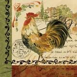 Viva Italia Roosters IV