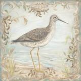 Shore Birds III